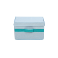 Storage Box With Lid Small (Blue)