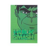 Marvel Stitch Bound Book-Hulk
