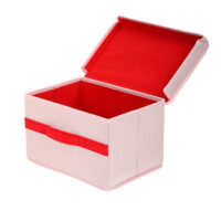 Storage Box With Lid Small (Pink)